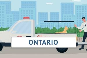 Ontario Animal Control Officer Training